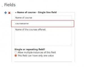 Custom field slug name