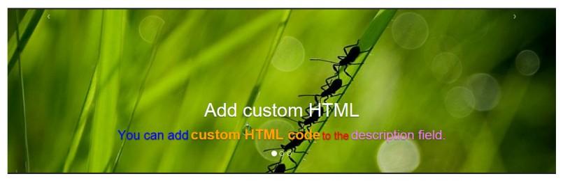 Slider cell with custom HTML