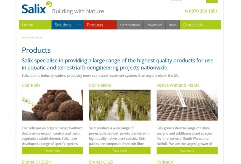 Salix: Building with Nature