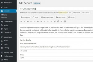 2. Single service post including custom fields - WordPress Dashboard