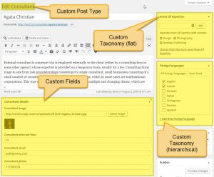 Toolset - Custom Fields And Taxonomies On A Custom Post Editing Page