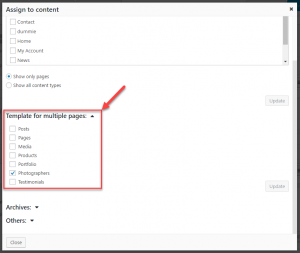 Assign a layout as a template for posts of any custom post type