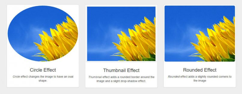 Three Bootstrap Image Effects In The Layouts Image box Cell