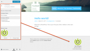 Custom Theme Options on the WordPress Customize page