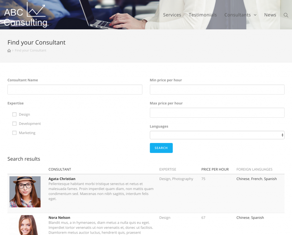 Screenshot of Consultant search form on front end